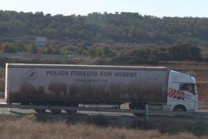 Управление лесного хозяйства Польши проверяет грузовики с круглым лесом
