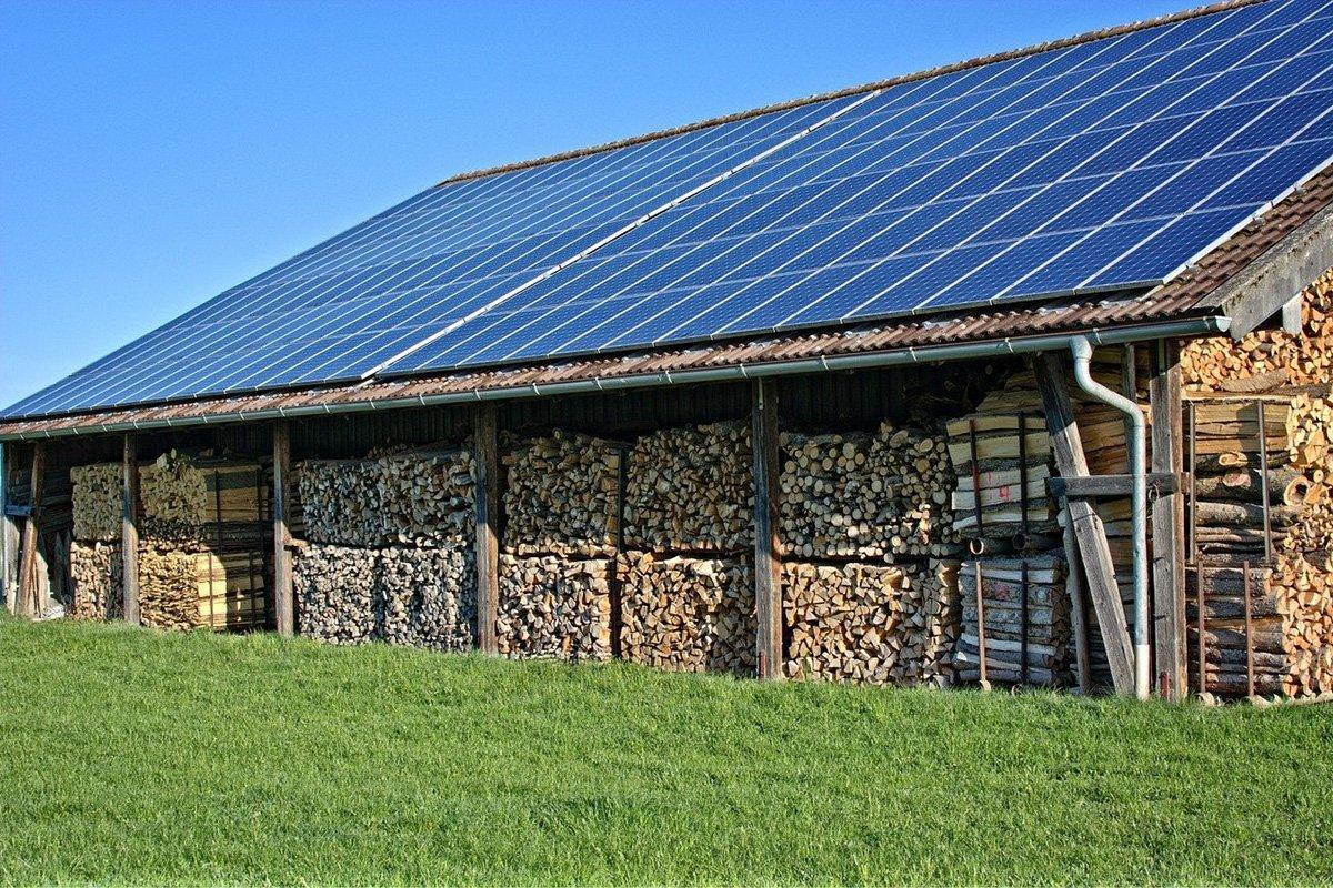 В 2020 году в Финляндии заметно выросли цены на энергетическую древесину