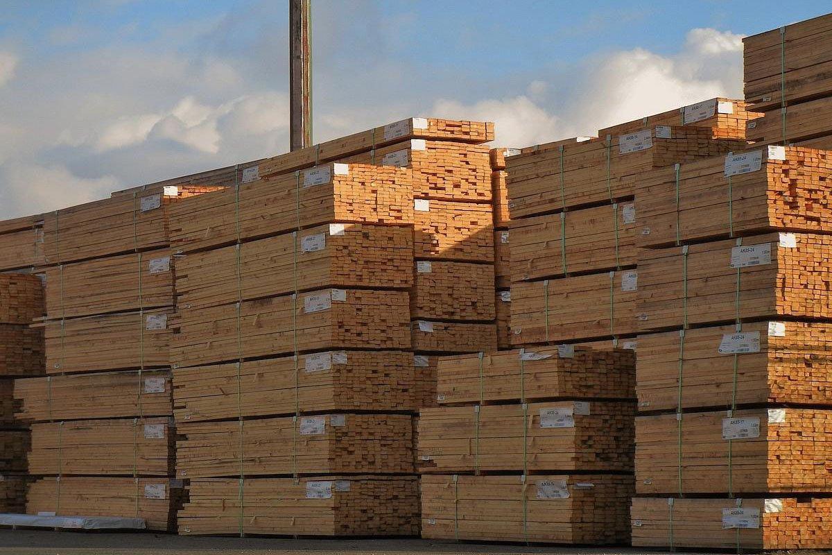 Объем экспорта пиломатериалов хвойных пород из Румынии вырос более чем на 26%