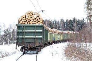 Из-за проверок со стороны Пекина на российско-китайской границе скопились поезда с лесопродукцией