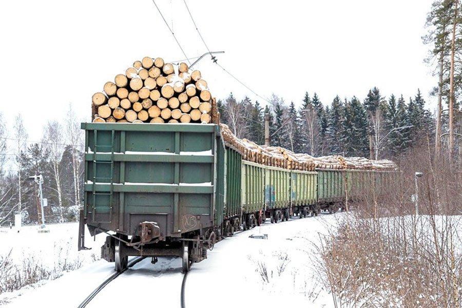 You are currently viewing Из-за проверок со стороны Пекина на российско-китайской границе скопились поезда с лесопродукцией