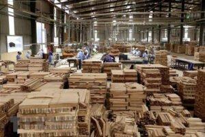 Экспорт Вьетнама лесных товаров резко вырос за первые 2 месяца этого года; зарегистрировано только 4 новых случая Covid-19