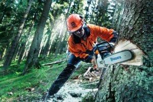На три тысячи человек сократилась рабочая сила лесного сектора Финляндии в 2020 году