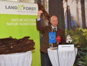 Австрия: в 2020 году на лесное хозяйство повлияли климат и кризис Covid-19, сложные рыночные условия и растущие социальные требования.