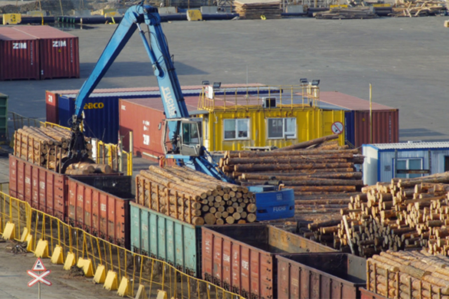 В Латвии отмечается дальнейшее снижение экспорта круглого леса