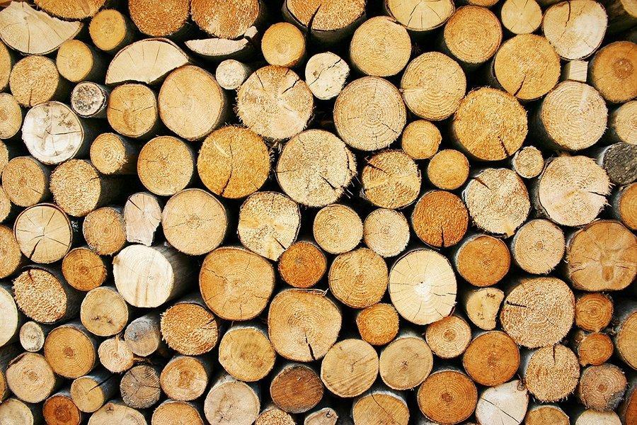 You are currently viewing Иркутская область стала лидером в экспорте леса среди сибирских регионов
