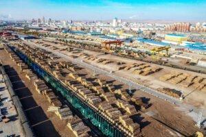 Россия уменьшила экспорт круглого леса в Китай