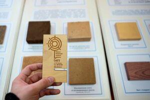 Ученые из Красноярска представили новые технологии для деревопереработки