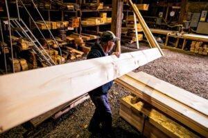 Скачок цен на пиломатериалы не привел к повышению стоимости необработанной древесины, по крайней мере, пока