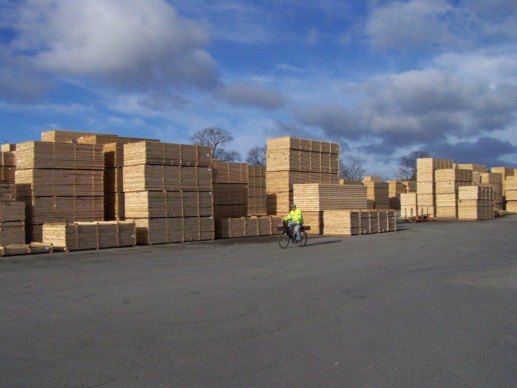 Тюрингия: Спрос на древесину растет и это помогает лесу