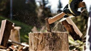 Чехия: Снижение цен на древесину закончилось. Есть тенденция их роста