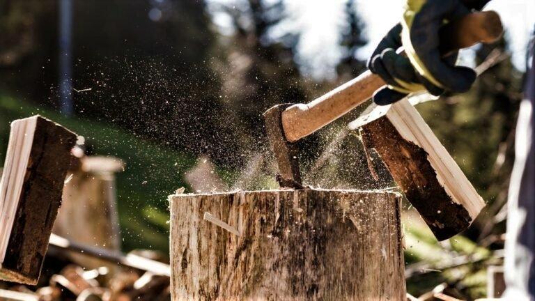 You are currently viewing Чехия: Снижение цен на древесину закончилось. Есть тенденция их роста