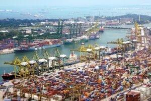 Read more about the article Более чем на 30 процентов вырос бразильский экспорт продукции из древесины