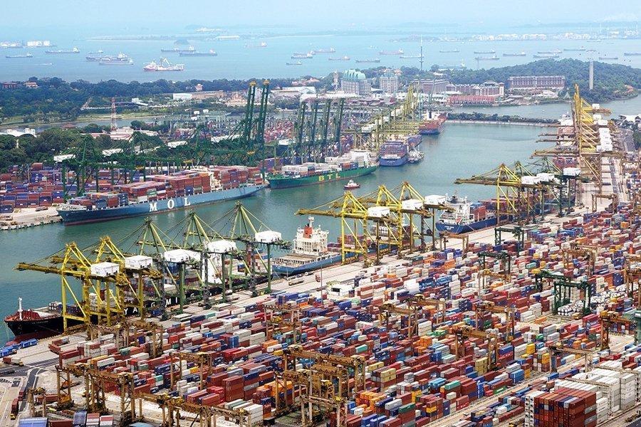 You are currently viewing Более чем на 30 процентов вырос бразильский экспорт продукции из древесины
