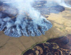 Read more about the article «Зомби — пожары», — пожары, которые отказываются умирать