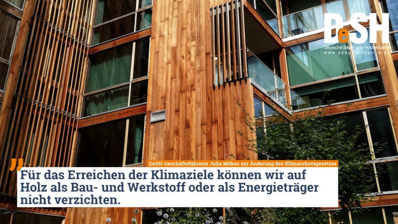 Защита климата невозможна без использования древесины