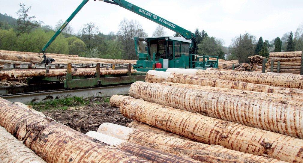 Министр лесного хозяйства земли Баден-Вюртемберг Петер Хаук: «Укрепление местной лесной промышленности и местных деревообрабатывающих компаний — это хорошее вложение в будущее »