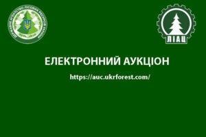 Read more about the article Украина: рост цен на пиловочник хвойных пород продолжается