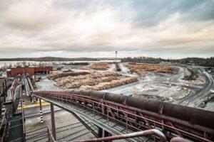 Read more about the article Меры по реструктуризации лесопильных заводов UPM Timber
