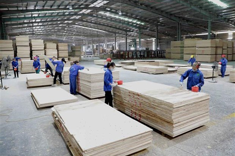 You are currently viewing Экспорт древесины вырос на 50,5% за четыре месяца