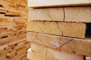 Read more about the article Профессора лесного хозяйства Обернского университета обсуждают рост цен на пиломатериалы