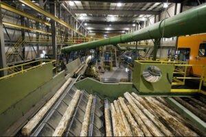 Канадские производители пиломатериалов расширят свою деятельность в США. Лесопильные заводы на фоне жилищного бума