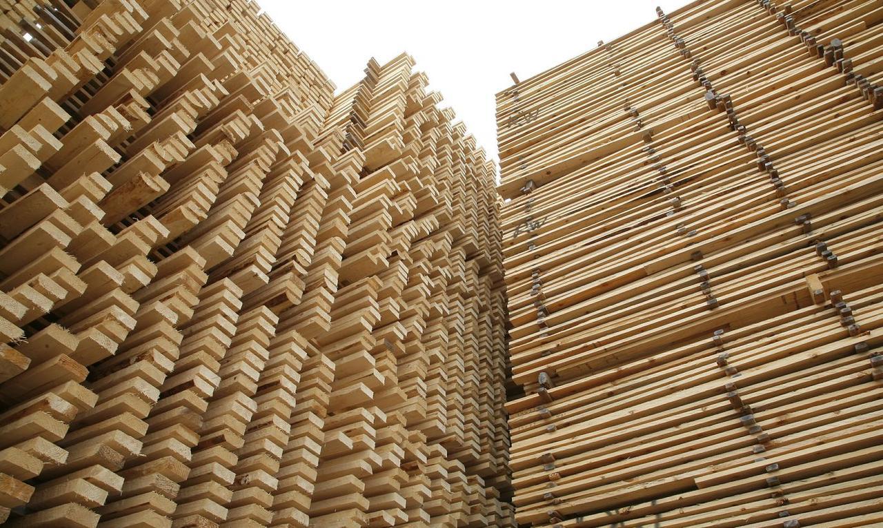 You are currently viewing Ослабление ограничений обрушило цены на древесины