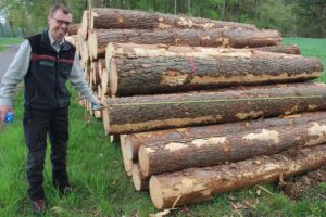 Read more about the article Цены взрываются: древесина — новое золото