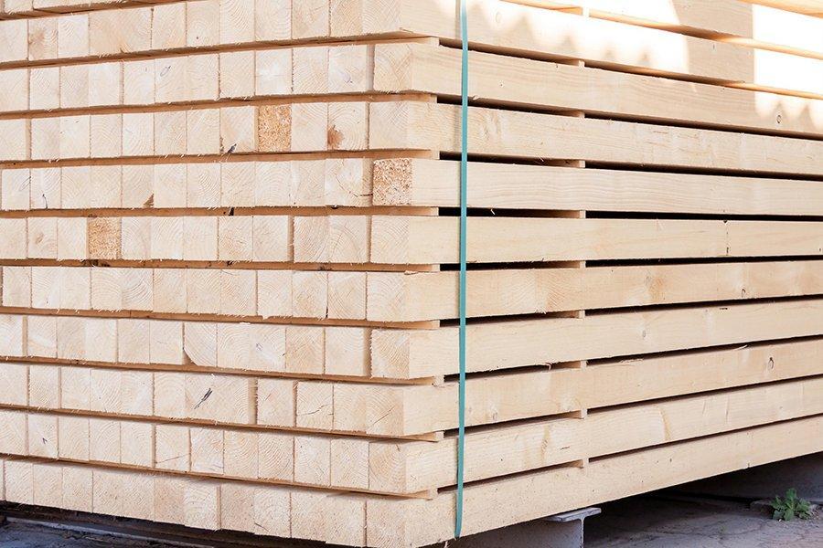 Реализация древесины через электронные торги увеличила доход на 36%, – Гослесагентство