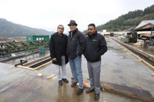 Read more about the article San Group инвестирует 100 млн долларов в четыре лесных проекта