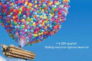 Read more about the article Украина: цена на пиловочник хвойных пород выросла на 462%