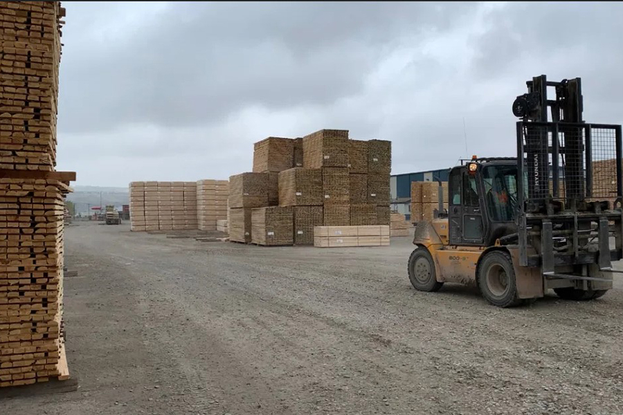 You are currently viewing Альберта нацелена на увеличение объемов заготовки лесной продукции, поскольку высокие цены приносят прибыль
