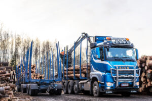 Read more about the article Четыре способа уменьшить воздействие лесного хозяйства на климат и сэкономить энергию
