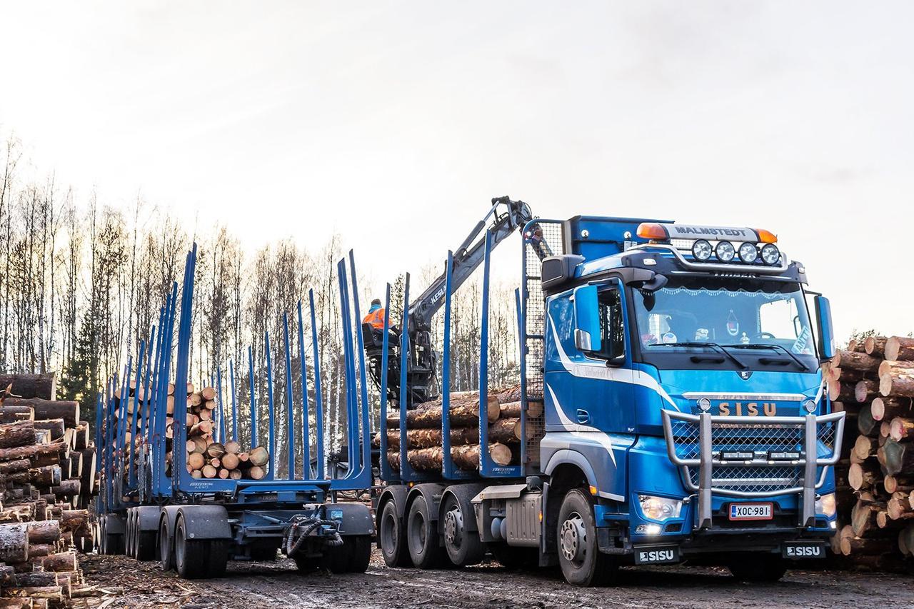 Четыре способа уменьшить воздействие лесного хозяйства на климат и сэкономить энергию