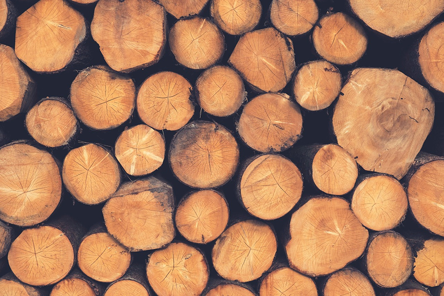 You are currently viewing В Лесном кодексе зафиксируют понятия необработанных и обработанных лесоматериалов
