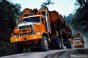Read more about the article Письмо представителей ассоциаций лесной отрасли США президенту Джозефу Р. Байдену с просьбой о поддержке цепочки поставок
