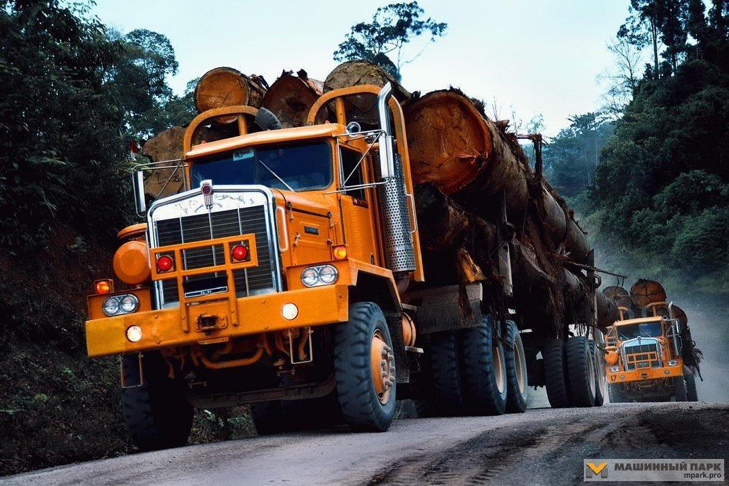 You are currently viewing Письмо представителей ассоциаций лесной отрасли США президенту Джозефу Р. Байдену с просьбой о поддержке цепочки поставок