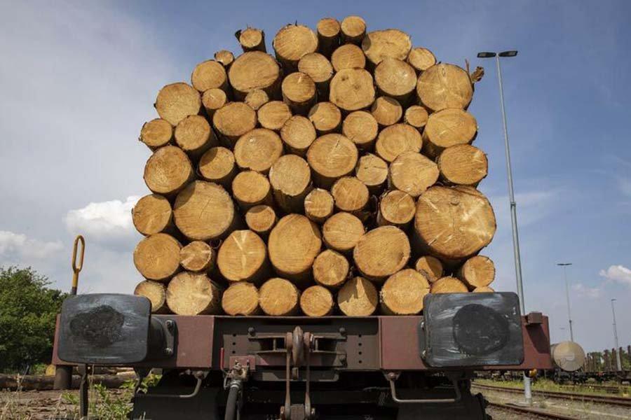 Read more about the article Дополнительное повышение цен на 30% к концу года: как древесина и другое сырье становятся еще дороже
