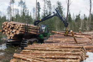Read more about the article Австрия и Румыния критикуют лесную стратегию ЕС