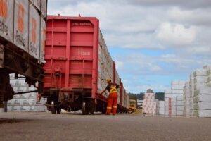 Read more about the article Канада значительно увеличила объемы экспорта в США