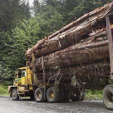 You are currently viewing Канада  инвестирует 1,7 млн долларов в разработку гибридных лесовозов