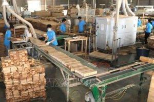 Read more about the article Вьетнам: экспорт древесины в ЕС в первом полугодии вырос на 36,4%