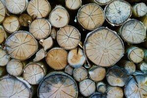 Read more about the article Объем коммерческой лесозаготовки в Финляндии превысил в мае четыре миллиона кубометров