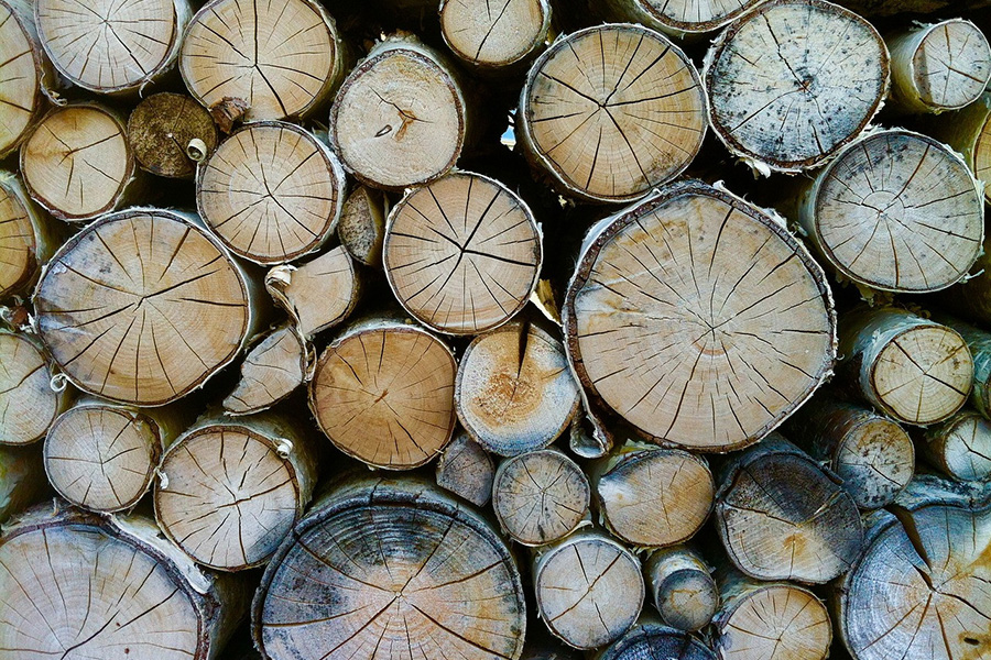 You are currently viewing Объем коммерческой лесозаготовки в Финляндии превысил в мае четыре миллиона кубометров