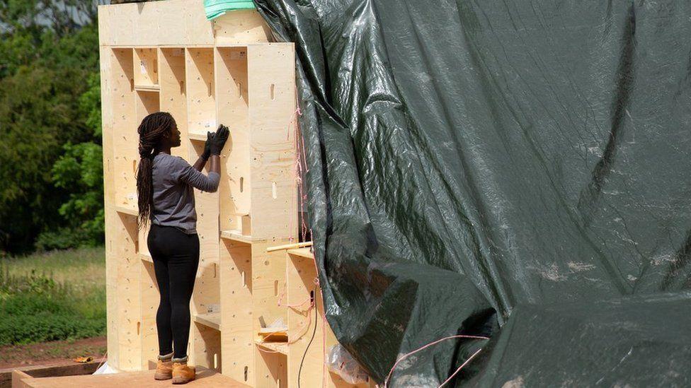 You are currently viewing Дефицит древесины из-за «беспрецедентного» спроса после карантина