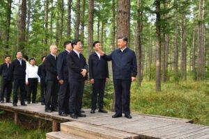 Read more about the article Си Цзиньпин осматривает лесную ферму в провинции Хэбэй