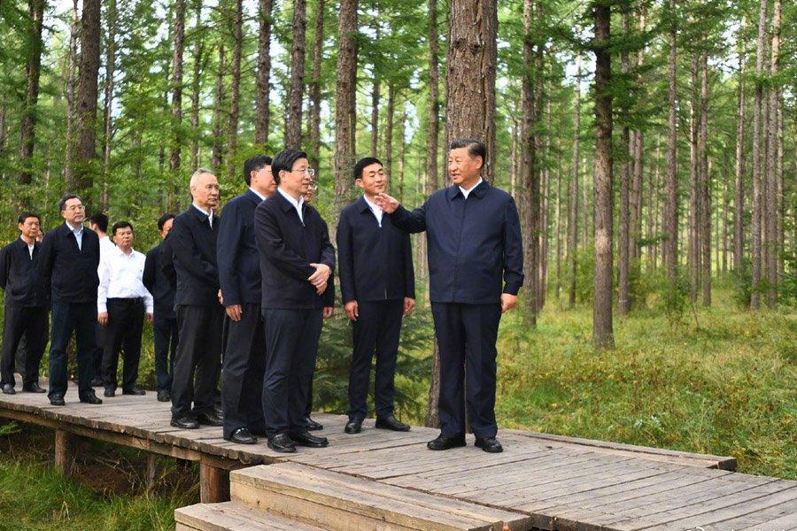 You are currently viewing Си Цзиньпин осматривает лесную ферму в провинции Хэбэй
