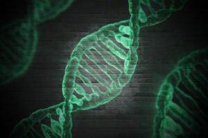 Read more about the article ДНК дерева впервые стала доказательством вины в суде