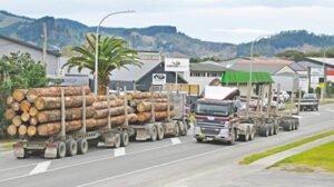 Read more about the article Новая Зеландия может ограничить экспорт древесины из-за дефицита