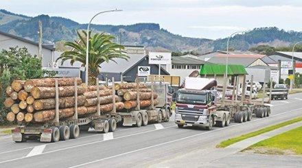 You are currently viewing Новая Зеландия может ограничить экспорт древесины из-за дефицита